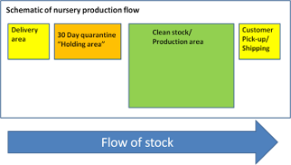 Nursery BMP: Diagram showing flow of nursery stock. Plants should be held for 30-day quarantine period before releasing into production areas of nurseries.; Photo Credit: N. Dart