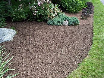Mulch bed with edge