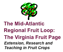 Virginia Fruit Page